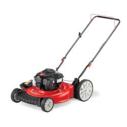Best budget gas powered lawn mower