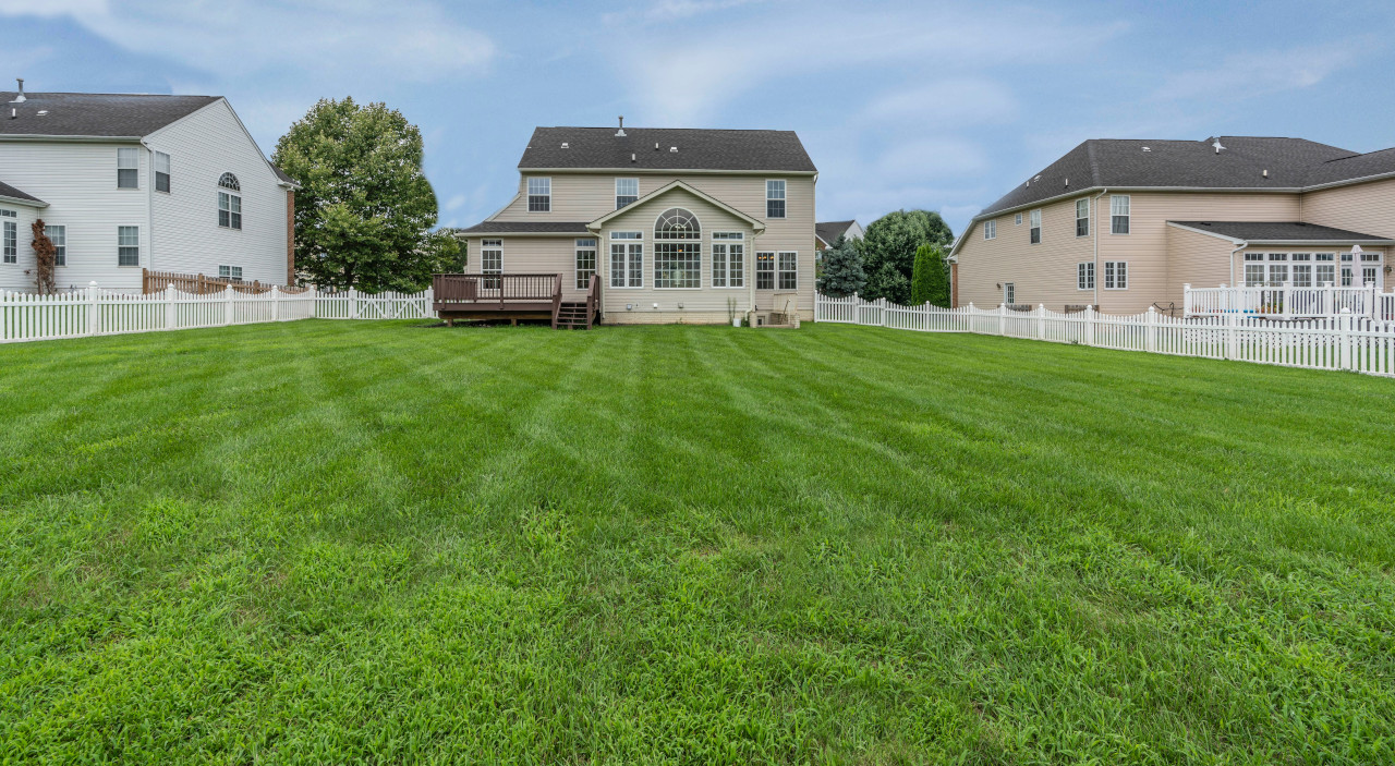 How to renovate lawn