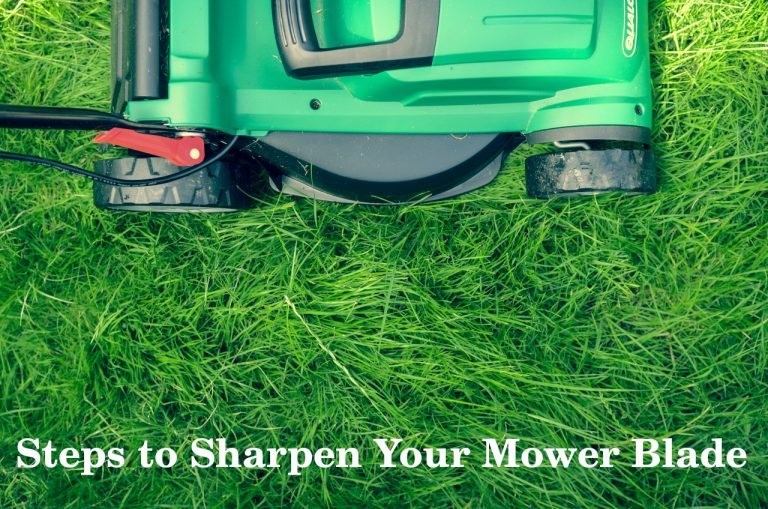 6 Steps to Sharpen Your Mower Blade- Experts Opinion