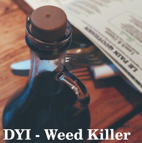 Homemade lawn weed killer – Best DIY solution