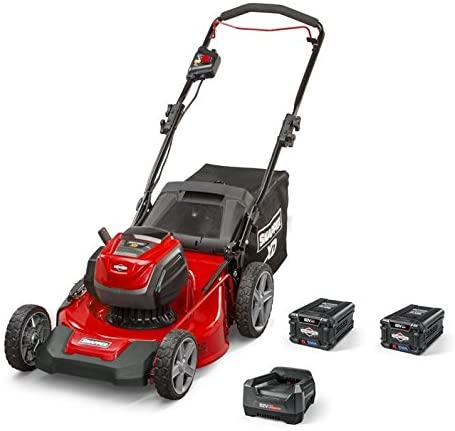 Best Electric Lawn Mower For Small Yard