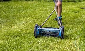 Best Reel Mower For Small Yard – Experts Opinion