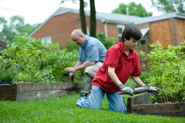 How to Improve soil in your lawn